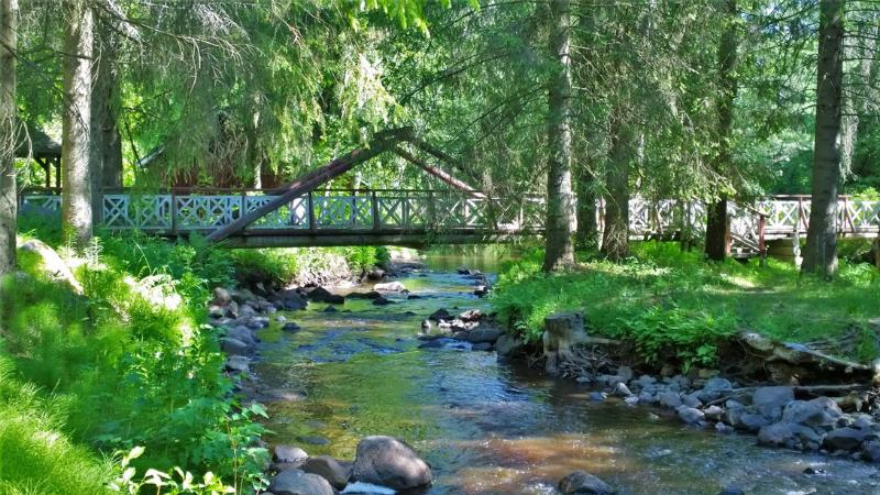 Liminganjoki virtaa Alakestilän Arboretumin halki. Joen yli kulkee silta.