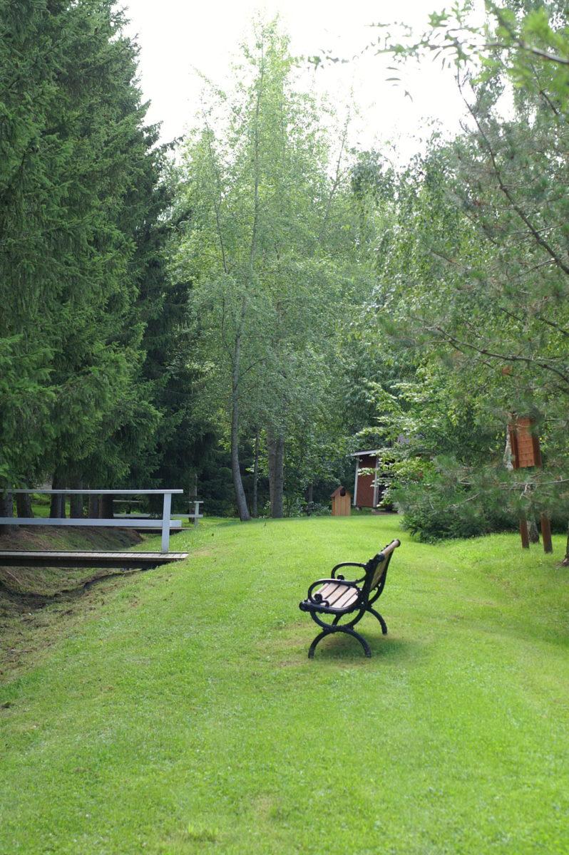 Arboretumin maisema, joki, puita ja penkki.