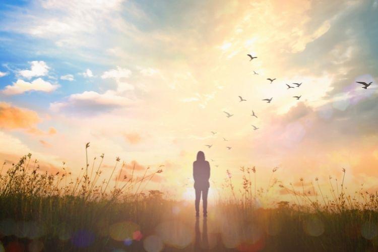 Ihminen seisoo niityllä selin ja lintuparvi on pyrähtänyt lentoon.